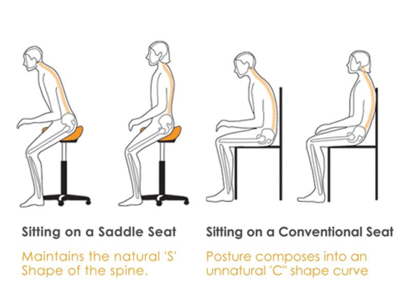 Saddle-Posture
